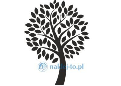 drzewo naklejka